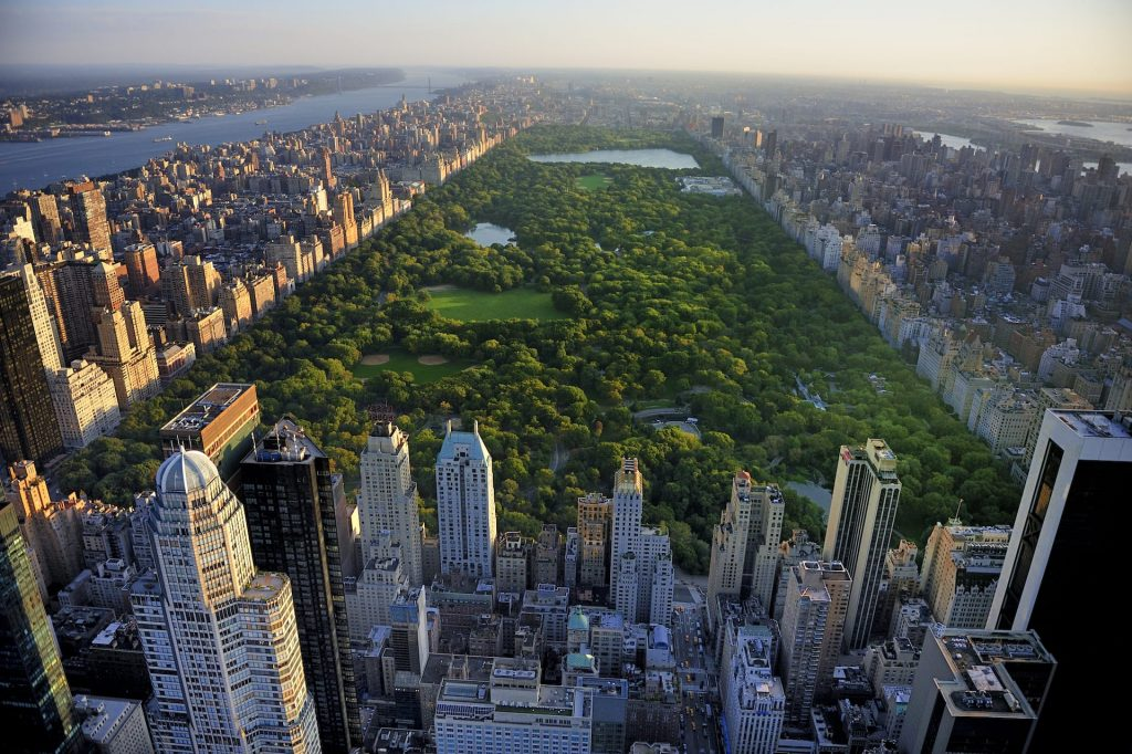 Aerial view of Central Park which is surrounded by skyscrapers